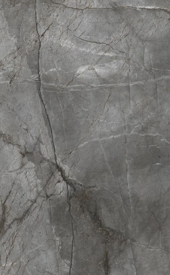 ROOT SILVER 120x180